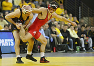 January 22 2010: Iowa's Matt Ballweg grabs the leg of Ohio State's Mike Fee during the 149-pound bout an NCAA wrestling dual at Carver-Hawkeye Arena in Iowa City, Iowa on January 22, 2010. Ballweg defeated Fee in a major decision 12-3 and Iowa defeated Ohio State 33-3..