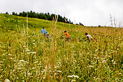 """Children running up a close by hill at the Roma part of the district """"Podsadek"""" in eastern Slovakia. The town of Stara Lubovna has a population of 16350, of whom 2 060 (13%) are of Roma origin. The majority of Roma live in the Podsadek district, where 980 (74%) out of 1330 inhabitants are Roma."""