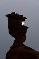 Felsfigur in der algerischen Sahara