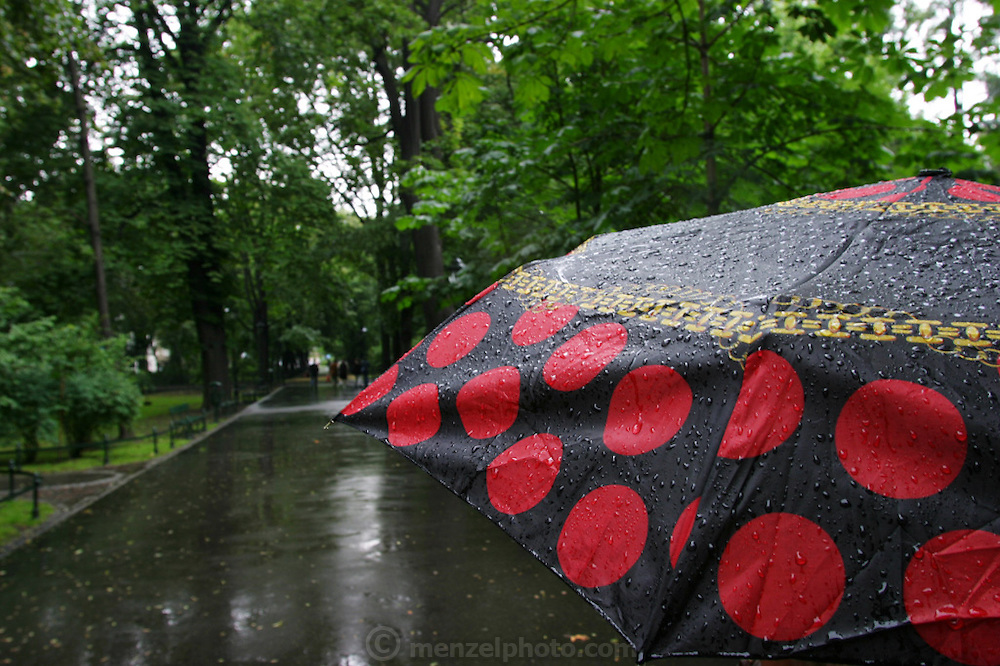 Krakow, Poland umbrella and summer rain in park.
