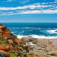 Sea Dragon Lodge, Pink Bay,Australian sea-lions,Kangaroo Island - South Australia,Nature's Pleasure Island, Australia's 3rd largest Island.