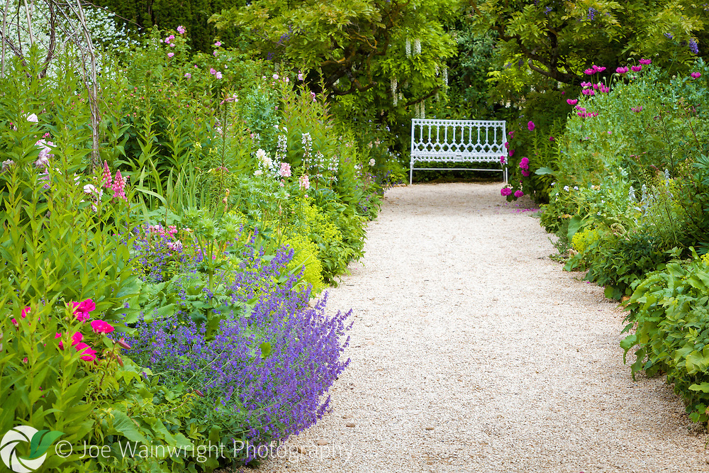 Poppies, catmint, lupins and wisteria make a colourful June scene at the end of the Rose Walk at Hidcote Manor Garden, Gloucestershire.