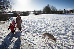©Paul Thompson Licensed to London News Pictures. 01/02/2015. Bradford West Yorkshire, UK. Georgina Tidswell, Frances Tidswell-Thompson (6) and Nicholas Tidswell-Thompson (4) dog walking in the snow in Denholme, West Yorkshire. Photo credit : Paul Thompson/LNP
