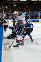 KELOWNA, CANADA - FEBRUARY 12:  Leif Mattson #28 and Carsen Twarynski #18 of the Kelowna Rockets digs for the puck at the boards ahead of Matthew Phillips #11 of the Victoria Royals on February 12, 2018 at Prospera Place in Kelowna, British Columbia, Canada.  (Photo by Marissa Baecker/Shoot the Breeze)  *** Local Caption ***