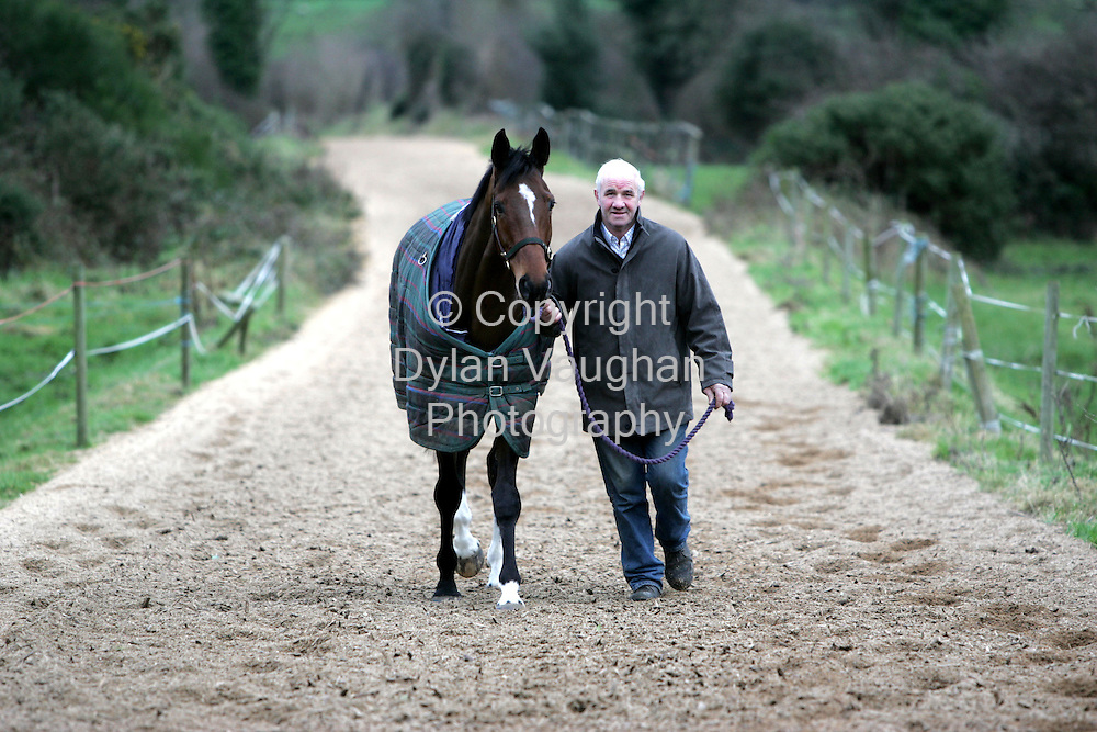 """18/2/2005.Tom Foley pictured with """"Royal Paradise"""" at his stud farm near Bagnelstown County Carlow..Picture Dylan Vaughan."""