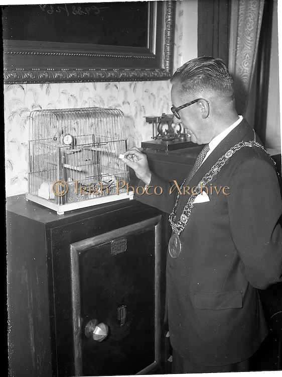 """30/06/1959<br /> 06/30/1959<br /> 30 June 1959<br /> Lord Mayor of Dublin, Philip Brady at the Mansion House with budgie """"Lordy Byrne"""" or """"Hardy Byrne""""."""