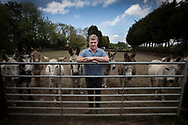 Proprietor Tom Tuohy pictured at Alwood Farm Donkeys, at Upton, Wirral. Mr Tuohy runs the family business which hires out donkeys for events, functions, parties and guest appearances, such as in the arts and on television. Due to the coronavirus outbreak and lockdown restrictions, all his bookings for the foreseeable future have been cancelled and he has had to let staff go. He works every day by himself and with a couple of volunteers looking after his 20 donkeys, feeding, grooming and caring for them.<br /> <br /> These photographs were taken in accordance with the UK Government's advice at the time on maintaining social distancing whilst working.