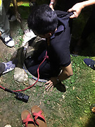 """Four year old killed as she tumbles down uncovered drain<br /> <br /> CCTV footage from a shop in a Samut Prakarn housing estate shows a four year old girl falling down an uncovered sewer opening to her death.<br /> <br />  The tragedy occurred near a football pitch next to building 7 at the Ban Eua-Athorn estate behind Wat Ngon Kai where many children play.<br /> <br /> Police are set to meet with all the relevant authorities to decide what action to take in the case.<br /> <br /> Dead at the scene was four year old Yosita Bunngam who everyone called """"Namnung"""".<br /> <br />  Her father Ratchanon Bunngam, 42, said yesterday evening that Namnung had left their room in building 2 with her elder brother to go and buy sweets from a neighborhood shop.<br /> <br />  While the brother was buying the sweets she ran off behind the shop. After that he could not find her and went home to tell the parents she was missing.<br /> A search was mounted and when that failed to find the little girl the father asked to look at CCTV footage from the shop when the tragedy was discovered. In the footage Namnung seems to step on something laid casually over the drain and then topple in.<br /> <br />  Krathum Baen police and Ruamkathanyu foundation staff rushed to the scene and a suction device was first employed to lower the water level in the drain.<br /> Then the rescuers could see the tragic sight of the little girl's feet floating in the water.<br /> <br /> A ladder was used to enter the drain and get her out but she was already dead.<br /> ©Thai Rescue Service/Exclusivepix Media"""