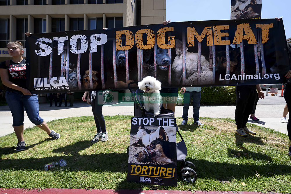 June 9, 2017 - Los Angeles, California, United States - Animal rights activists gather in front of the Chinese Consulate General in Los Angeles to protest China's dog meat trade and Yulin Dog Meat Festival. Los Angeles, California on June 9, 2017. According to activists with Last Chance for Animals, thousands of dogs are beaten, boiled and burned alive during the Yulin Dog Meat Festival. (Credit Image: © Ronen Tivony/NurPhoto via ZUMA Press)