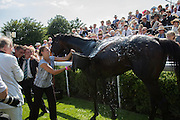 Brown Panther BEING COOLED OFF, Glorious Goodwood. Thursday.  Sussex. 3 August 2013