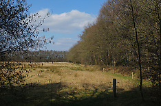 Zuidvelde, Noordenveld, Drenthe