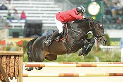 SZASZ Sandor, Moosbachhof´s Goldwing<br /> Kentucky - Alltech FEI WEG 2010<br /> /Stefan Lafrentz