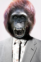 Senior man with gorilla's head laughing in front White Background