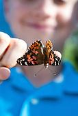 Bianca: butterfly release