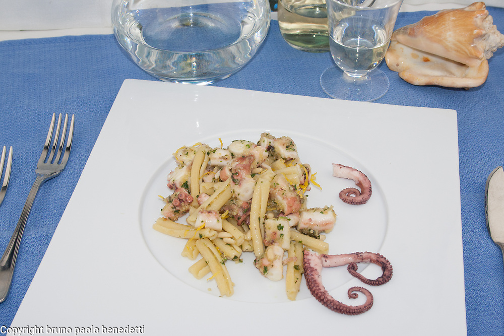 casarecce pasta with octopus sauce on white dish and blue table cloth background, shell garnish with white wine an water, forks and fish knife, italian food