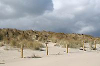 Sand dunes at Curracloe Beach in Wexford Ireland where the opening scenes of Spielberg's film Saving Private Ryan was filmed