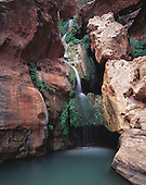 02354 Elves Chasm Grand Canyon National Park waterfall grotto pool swimming hole moss cool secluded