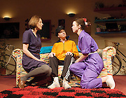 Di and Viv and Rose, by Amelia Bullmore<br /> at the Hampstead Theatre, London, Great Britain <br /> directed by Anna Mackmin<br /> <br /> press photocall<br /> 22nd january 2013 <br /> <br /> Gina McKee as Viv <br /> Tamzin Outhwaite as Di<br /> Anna Maxwell Martin as Rose <br /> <br /> Photograph by Elliott Franks