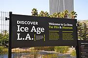 La Brea Tar Pits & Museum Signage