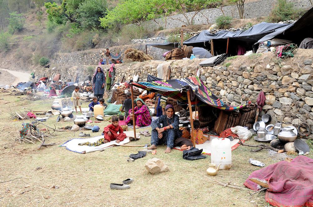 Van Gujjar families camped together along the Bhagirathi River.