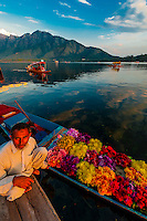 A merchant and his shikara (boat) loaded with flowers, Dal Lake in Srinagar, Kashmir, Jammu and Kashmir State, India.