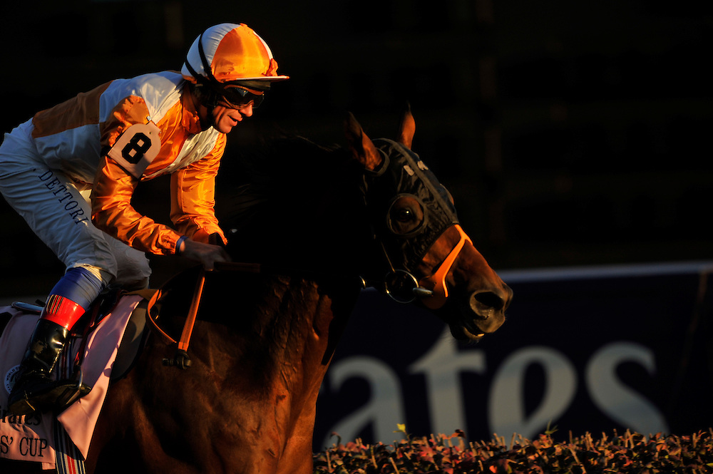November 6, 2010: Dangerous Midge, ridden by Frankie Dettori and trained by Brian Meehan win in the Emirates Airline Breeders Cup Turf at Churchill Downs in Louisville, KY.