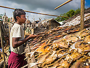 07 NOVEMBER 2014 - SITTWE, RAKHINE, MYANMAR: A Rohingya Muslim man dries fish on the roof of his tenet in a Rohingya IDP camp near Sittwe. After sectarian violence devastated Rohingya communities and left hundreds of Rohingya dead in 2012, the government of Myanmar forced more than 140,000 Rohingya Muslims who used to live in and around Sittwe, Myanmar, into squalid Internal Displaced Persons camps. The government says the Rohingya are not Burmese citizens, that they are illegal immigrants from Bangladesh. The Bangladesh government says the Rohingya are Burmese and the Rohingya insist that they have lived in Burma for generations. The camps are about 20 minutes from Sittwe but the Rohingya who live in the camps are not allowed to leave without government permission. They are not allowed to work outside the camps, they are not allowed to go to Sittwe to use the hospital, go to school or do business. The camps have no electricity. Water is delivered through community wells. There are small schools funded by NOGs in the camps and a few private clinics but medical care is costly and not reliable.   PHOTO BY JACK KURTZ