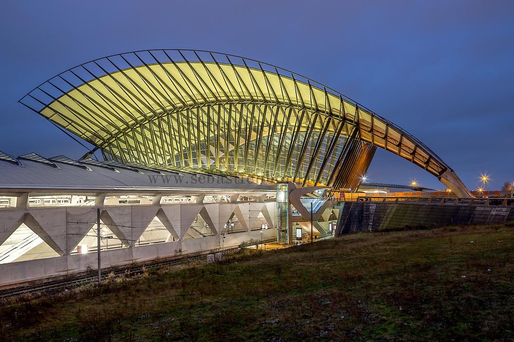 Gare de Lyon Saint-Exupéry TGV près de l'aéroport de Lyon// Lyon Saint-Exupéry TGV train station near Lyon airport