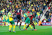 AFC Bournemouth midfielder Dan Gosling scoring the opening goal during the Barclays Premier League match between Bournemouth and Norwich City at the Goldsands Stadium, Bournemouth, England on 16 January 2016. Photo by Graham Hunt.