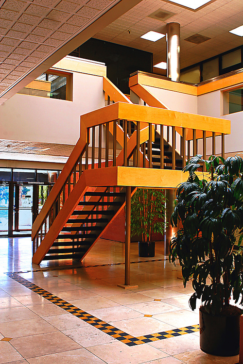 Mid century modern staircase .