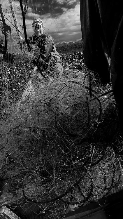 Comunidade de Santa Isabel no município Arroio Grande no Rio Grande do Sul. Pescadores Cleci Machado da Silva e seu esposo Gaúcho (Vorni dos Santos Silva) , pescando na Lagoa das Vacas, Granja 4 irmãos e Sangradouro, pertencentes a bacia Patos Mirim . Gaúcho pescou Trairão, Traíra, Jundiá, Pintado e Tambica . A vegetação local é formada por  Camilha, palha, Sarandi e Aguapé.