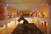 Santana do Cariri_CE, Brasil.<br /> <br /> Trabalho expotos no Museu de Palenteologia da cidade. O vale do Cariri e uma regiao com grande numero de fosseis pre-historicos.<br /> <br /> Paleontology Museum in Santana do Cariri. The valley Cariri is a region with a large number of prehistoric fossils.<br /> <br /> Foto: LEO DRUMOND / NITRO