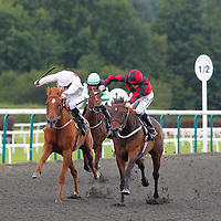 Dance Company and Jim Crowley winning the 4.05 race