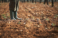 Man in galoshes standing on brown soil low section