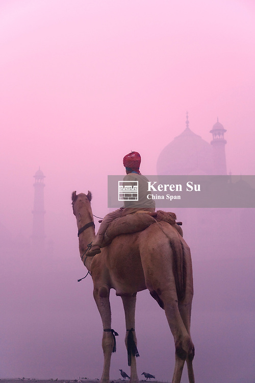 Boy riding on camel with Taj Mahal in morning mist, Agra, India