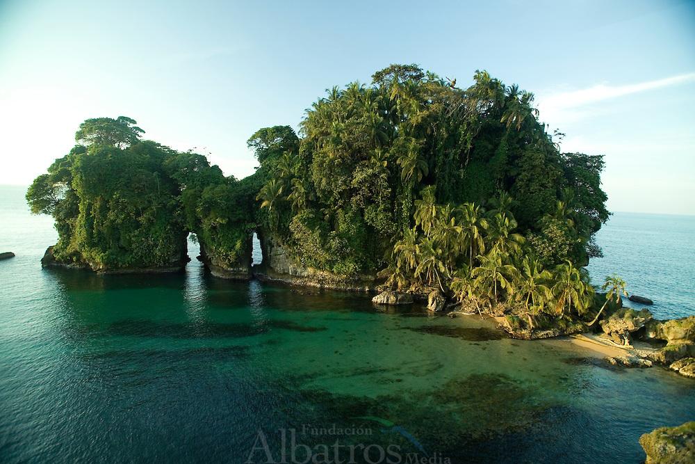Hacia el mar abierto, se encuentra la Isla de los Pájaros (también conocido como Cayo Cisne), santuario de aves donde anidan la bella y rara Ave Tropical (Rabijunco Piquirrojo), de blanco plumaje, pico color naranja y, en los machos, una larga y vistosa cola, así como el simpático alcatraz (piquero o bobo).<br /> <br /> Otras aves marinas, como el pelícano, las gaviotas, los gaviotines y la fragata, pasan parte de su tiempo en el cayo.<br /> <br /> Mientras las aves tropicales usan los huecos en los acantilados para anidar, los alcatraces hacen sus nidos en el mismo suelo, por todas partes.<br /> <br /> Para no molestar a las aves, especialmente a los piqueros, no es permitido ni recomendado el desembarque en la isla.<br /> <br /> ©Alejandro Balaguer/Fundación Albatros Media.