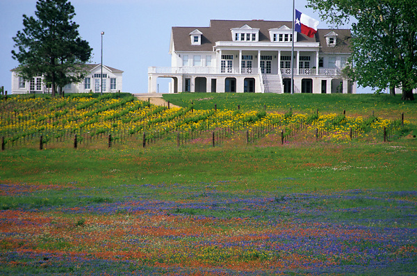 country house surrounded by native flowers