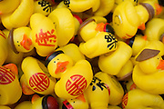 Yellow Duckies with Chinese characters attract donations during the Lunar New Year event at the Great Mall of the Bay Area in Milpitas, California, on February 21, 2015. (Stan Olszewski/SOSKIphoto)