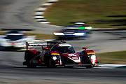 October 1, 2016: IMSA Petit Le Mans, #70 Joel Miller, Tom Long, Mazda Motorsport, Prototype