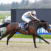 Gregori and Jimmy Fortune winning the 4.05 race