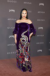 Eva Chow at the 2017 LACMA Art + Film Gala held at the LACMA in Los Angeles, USA on November 4, 2017.