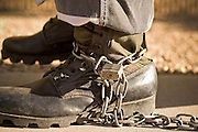 "24 MARCH 2004 - PHOENIX, AZ, USA: A member of the juvenile chain gang walks on a sidewalk in Phoenix, AZ, March 24, 2004. The juveniles volunteer to serve Maricpoa County Sheriff Joe Arpaio's chain gang. The sheriff, who claims to be ""the toughest sheriff in America,"" has chain gangs in both the men's and women's jails and now has a chain gang for juveniles sentenced and serving time as adults in the county jail system. The sheriff claims it is the only juvenile chain gang in the country.   PHOTO BY JACK KURTZ"