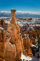 Thor's Hammer stands tall over the canyon hoodoos seen as you walk along the Navajo Loop trail in Bryce Canyon National Park on a sunny Winter day.