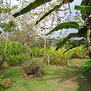 Finca Kobo, Osa Peninsula, Costa Rica, March 29, 2011. Photo by Sean Hughes/photopresse.photoshelter.com