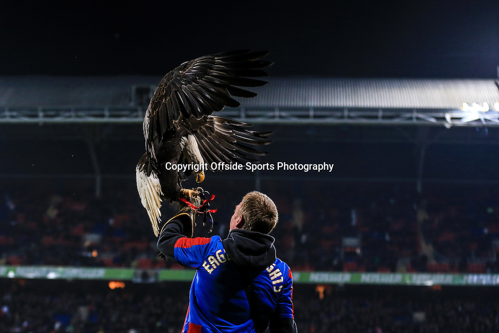 10 January 2015 - Barclays Premier League - Crystal Palace v Tottenham Hotspur - The Crystal Palace eagle is flown by a handler prior to kick off - Photo: Marc Atkins / Offside.