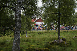 Peloton pass through the trees at the Crescent Vargarda - a 152 km road race, starting and finishing in Vargarda on August 13, 2017, in Vastra Gotaland, Sweden. (Photo by Sean Robinson/Velofocus.com)