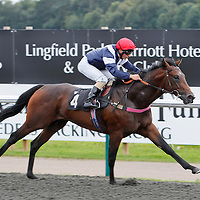 Whiteford and Andrea Antzeni winning the 2.40 race