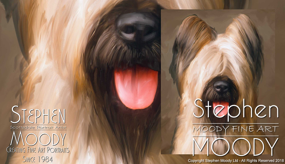 Fine Art Pet Portraits by Stephen Moody - Scottsdale Portrait Artist and Master Photographer, Scottsdale, AZ