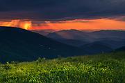 Peeshti Skali (Singing Rocks) reserve in Balkan Mountains