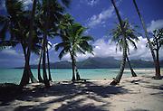 Motu (island) off Raiatea, French Polynesia<br />